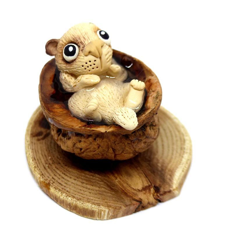 bebe-loutre-dans-une-coquille-de-noix
